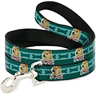 "Buckle-Down Pet Leash - DOGE Pose/Bones Turquoise - 4 Feet Long - 1"" Wide"