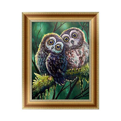 Owl 2 Embroidery (SCASTOE 5D Diamond Embroidery Painting Two Owls DIY Cross Stitch Craft Home Decor)