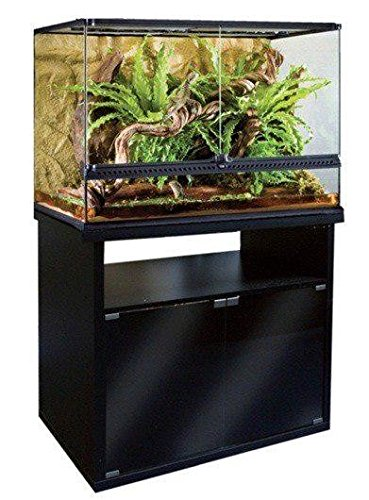 Amazon Com Exo Terra Terrarium Cabinet 36 Pet Supplies