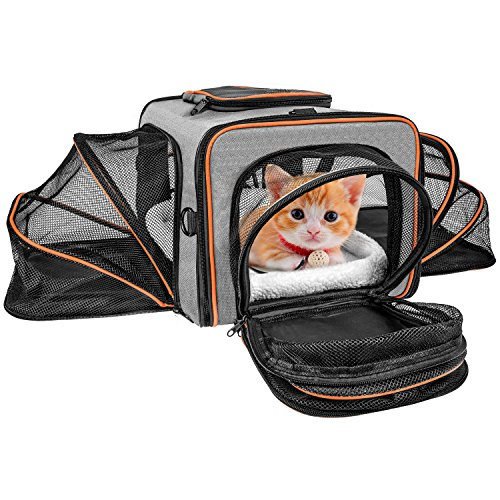 Pet Carrier for Cats Small Dogs F-color 4 Sides Expandable Puppy Carrier Airline Approved Cat Carrier Foldable Soft Sided Travel Crate Bag with Top Loading Door, a Side Pocket and a Fleece Bed