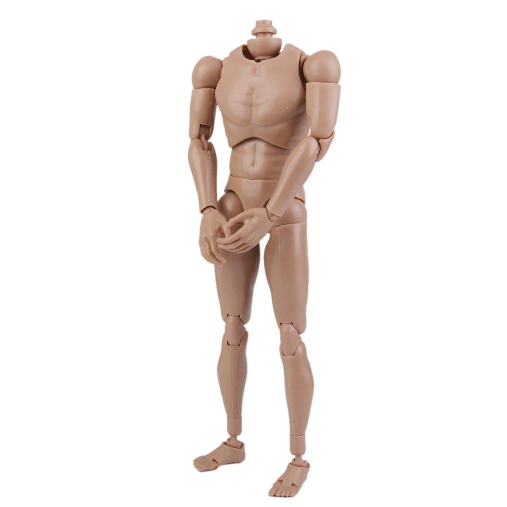 Male Narrow Shoulder Body 1//6 fit HeadPlay Action Figure Hot Toy TTM18 TTM19