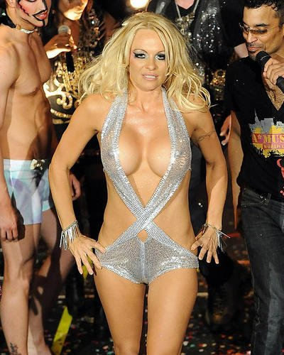 Pamela Anderson Stunning Sexy Skimpy Silver Costume 8x10 HD Aluminum Wall Art (Pamela Anderson Costumes)