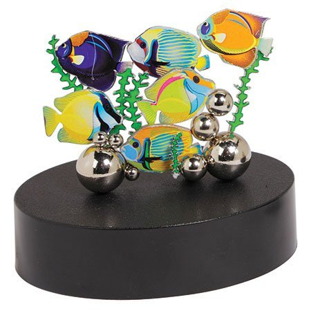 Magnetic Sculpture – Tropical Fish