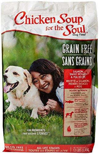 Chicken Soup for the Soul Grain Free – Salmon & Sweet Potato – Dog 12lb For Sale