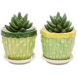 MyGift® Bamboo Garden Series Ceramic Flower Pot Planter w/ Attached Saucer - Set of 2 - Green & Yellow