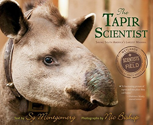The Tapir Scientist  Saving South America's Largest Mammal  Scientists In The Field Series