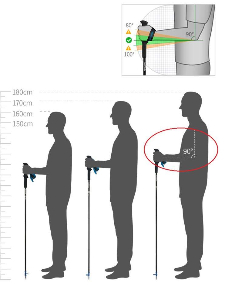 Weiwei Trekking Pole,2 PCS Fibre de Carbone Pliant Ultralight b/âtons de Marche l/éger Pliable Trail Running randonn/ée b/âtons Canne