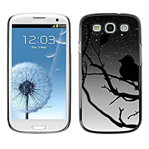 Qstar Arte & diseño plástico duro Fundas Cover Cubre Hard Case Cover para SAMSUNG Galaxy S3 III / i9300 / i747 ( Bird Tree Branch Night Sky Stars Dreaming)