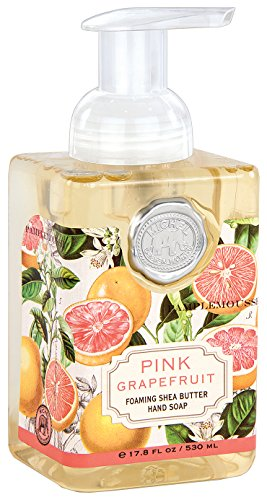 Michel Design Works Foaming Hand Soap - 8