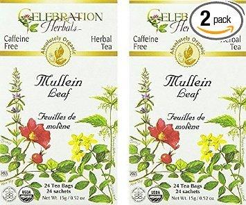 Celebration Herbals Organic Mullein Leaf Tea Caffeine Free - 2 Pack (48 Bags in Total) - Mullein Leaf Tea