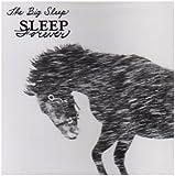 Sleep Forever by The Big Sleep (2008-02-19)