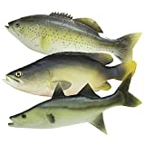 Wayber 3Pcs Simulated Fish Model for Kids Pretend Play, Home Decor, Market Display, Photography Prop