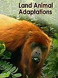 Land Animal Adaptations