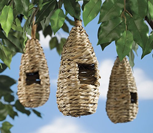 Miles-Kimball-Birds-Nests-Set-Of-3