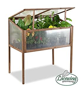 Lacewing 2ft 11in x 1ft 7in Tall Wooden Cold Frame on Legs