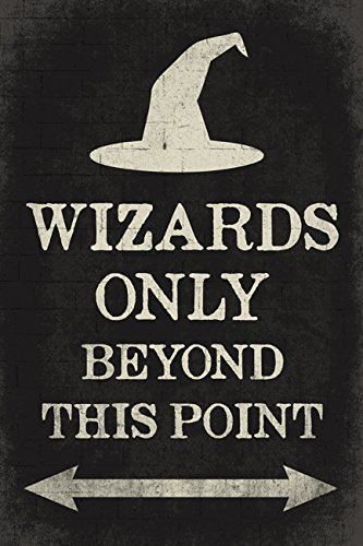Amazon.com: Wizards sólo más allá de este punto, Harry ...