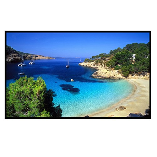 Excelvan Outdoor Portable Movie Screen 100'' 16:9 Home Cinema Projector Screen, PVC Fabric (Home Theater 100 Projector)