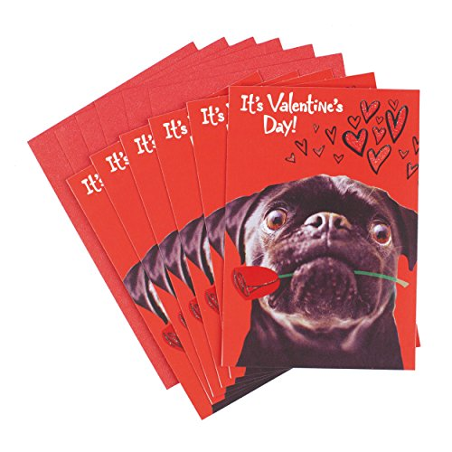 Hallmark Valentine's Day Greeting Cards (Pug, 6 Cards and 6 Envelopes)