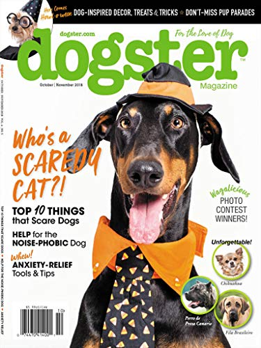 Magazines : Dogster