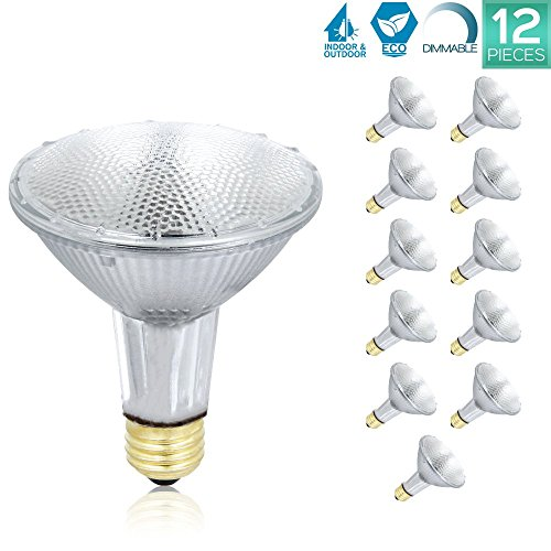 Two 60w Halogen Lights (Luxrite LR20633 (12-Pack) PAR30 Eco Halogen Long Neck Light Bulb, 60 Watt (75w replacement) Dimmable, 40° Flood Beam Spread, 2900K, 1080 Lumens E26 Base, For Indoor/outdoor use.)