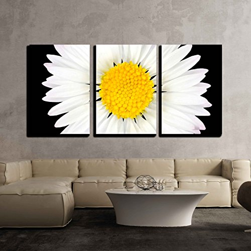 wall26 - 3 Piece Canvas Wall Art - Daisy Flower Isolated on Black Background - White with Yellow Center - Modern Home Decor Stretched and Framed Ready to Hang - 16