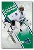 "Roberto Luongo - Vancouver Canucks NHL 22""x34"" Art Print Poster"