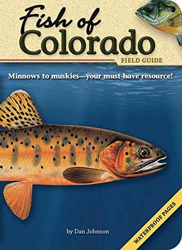 Fish of Colorado Field Guide (Fish Identification - Identification Guide Fish