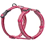 Embark Illuminate Reflective Dog Harness - Easy On and Off, No Choke Dog Walking Harness - Be Seen from All Angles - Dog Harnesses for Most Breeds (Small, Pink)