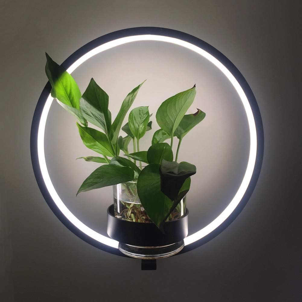 BuBu-Fu Led Plant Grow Light, 16W 150Led Grow Lamp para ...