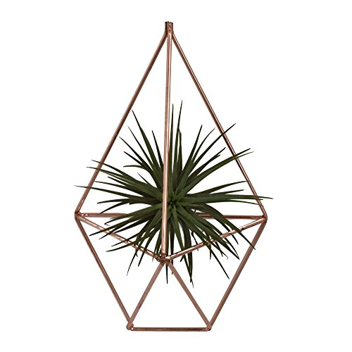 NCYP 7.87 inches Hanging Air Plants Holder Rustic Wall Mount Irregular Pentagon Geometric Metal Tillandsia Rack Accent Decor Rose Gold (No Plants)