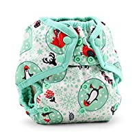 Rumparooz One Size Cloth Diaper Cover - Snap - Chill