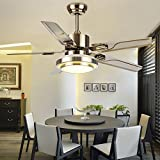 "Andersonlight Stainless Steel 48"" Ceiling Fan for Modern Review and Comparison"