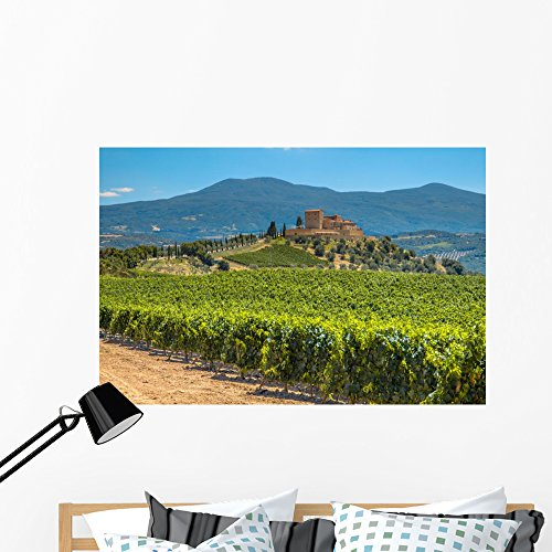 Castle Overseeing Vineyard Rows Wall Mural by Wallmonkeys Peel and Stick Graphic (48 in W x 32 in H) WM369262