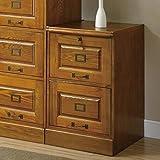 Coaster Home Furnishings 5317N Traditional File Cabinet, Oak