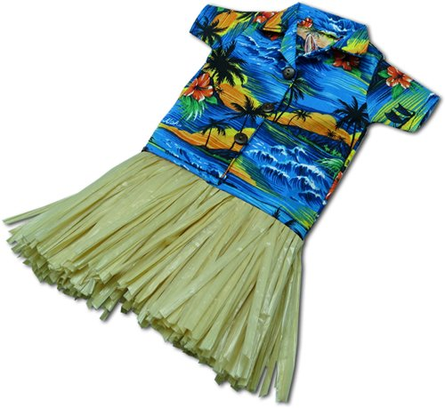 Traditional Aloha Hawaiian Shirt in Blue with Straw Hula Skirt Wine Bottle Cover