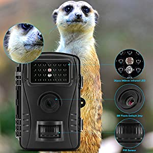 "Trail Camera MAXFUL Hunting and Game Wildlife Camera 720P HD IP54 Waterproof With 26Pcs IR LED 2.4"" LCD Screen 50 Foot Infrared Night Vision, Black"