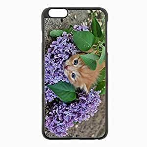 iPhone 6 Plus Black Hardshell Case 5.5inch - kitten lilac sleep lie Desin Images Protector Back Cover