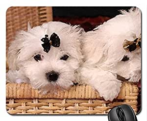 black puppy couple bow cute white basket dog sweet Mouse Pad, Mousepad (Dogs Mouse Pad, 10.2 x 8.3 x 0.12 inches)