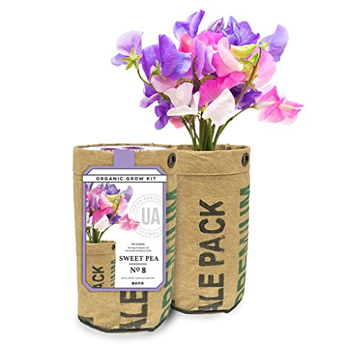 Urban-Agriculture Organic Flower Growing Kit Includes Organic Soil and Seeds Sweet Pea