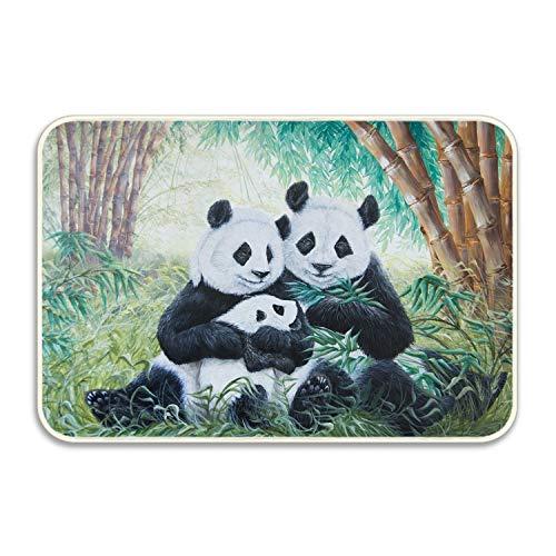 fuxinwang Sweet Home Printed Door Mat Panda Antivirus Free Floor Mats 16x24