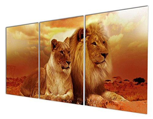 Gardenia Art Animal World Series Wild Lioness and Lion Canvas Prints Modern Wall Art Paintings Animals Artwork for Room Decoration,12x16 inch Per Piece, Stretched and Framed (Lioness Lion)