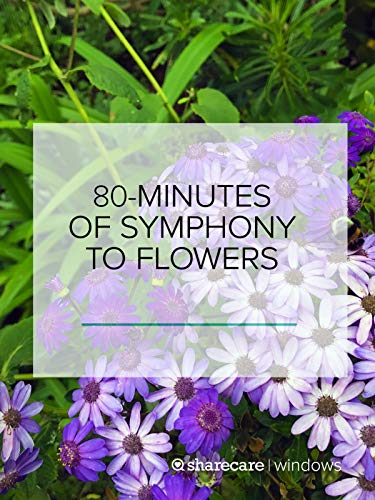 (80 Minutes of Symphony to Flowers)