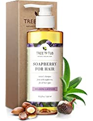 Organic Argan Oil Shampoo for Dry Hair and Scalp. The Only pH 5.5 Balanced Dandruff Shampoo for Sensitive Skin, with Calming Lavender Essential Oil and Organic Wild Soapberries, 8.5 oz—by Tree To Tub
