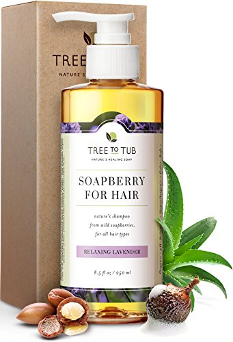 Moisturizing Shampoo for Sensitive Skin by Tree To Tub - pH 5.5 Balanced, Hypoallergenic for Dry Hair, Dandruff and Itchy Scalp, with Organic Argan Oil, Wild Soapberries, Natural Lavender Oil 8.5 oz