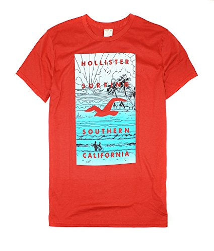 hollister-mens-soft-graphic-tee-ho10-small-red-1
