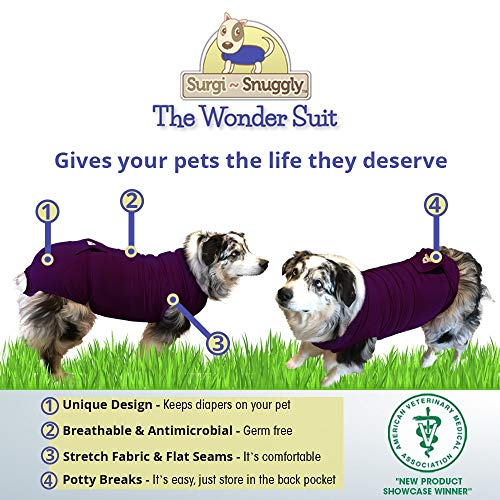 Picture of Large Plum Dog Diapers Keeper - Inventors of The Original Diapers Keeper - Just Add Your Favorite Disposable Dog Diapers Created by A Veterinarian Specifically to Fit Your Dog - Will Not Fall Off