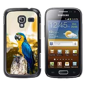 Caucho caso de Shell duro de la cubierta de accesorios de protección BY RAYDREAMMM - Samsung Galaxy Ace 2 - Macaw Blue Parrot