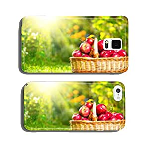 Organic Apples in a Basket outdoor. Orchard. Autumn Garden cell phone cover case iPhone6 Plus