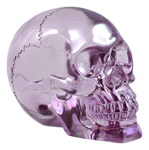 Ebros Gift Pirate Cave Tomb Treasure Purple Translucent Skull Figurine Decorative Statue Acrylic Resin ()