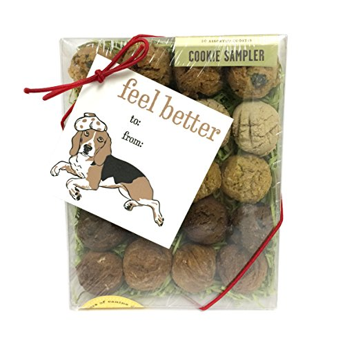 Feel Better Box with Gift Tag Dog Biscuits (Rub Dog Paw)